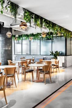 Co-working Designs: Brain Embassy Office, Israel - Love That Design Oak Parquet Flooring, Luxury Interior, Interior Design, Executive Room, Corporate Office Design, Bar Seating, Antique Doors, Co Working, Thinking Outside The Box