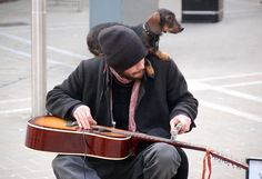Awesome busker playing slide guitar in Leeds .....and dog!
