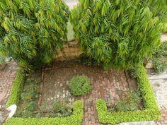 Shivangi Krishna: My Grany's House