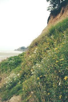 Off The Beaten Path: The Oregon Coast