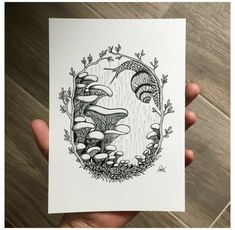 Mushroom Drawing, Mushroom Art, Cool Art Drawings, Art Drawings Sketches, Twig Art, Mushroom Tattoos, Posca Art, Arte Sketchbook, Stuffed Mushrooms