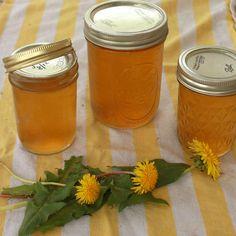 Tastes like sweet Honey! Way, way easier than it sounds: How to Make Dandelion Jelly | TeaspoonOfSpice.com