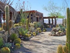 Mojave Rock Ranch – Lush landscape at high-desert retreat defies reason/ Joshua Tree.
