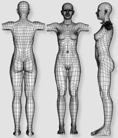 Human female - work in progress (thread will contain nudity)