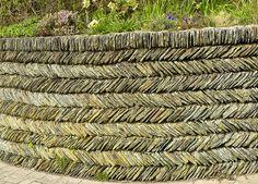 Garden wall, Mortehoe, Devon, England - photo by Charles Cuthbert (sandlings), via Flickr