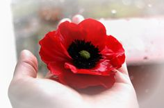 Red Poppy Alligator Clip/brooch - Floral Style - Red flower fascinator - Poppy brooch - Poppy Hair clip - pinned by pin4etsy.com