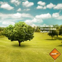 Com a locação #CarbonFree da #MovidaRentACar nós plantamos árvores para neutralizar a emissão de carbono do seu passeio. Faça uma viagem sustentável com a gente!  #LocaçãoSustentável #Sustentabilidade #MeioAmbiente #ConsciênciaAmbiental #AlugueldeCarro #ViajarConsciente #ViajemSustentável