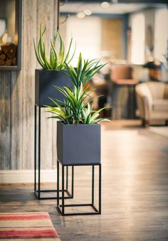 Oakley Planter Stand powder coated metal frame by The Oakley Narrow. A beautiful way to introduce plants to your home and office. This combination of a metal stand and GRP planter are the perfect match. House Plants Decor, Plant Decor, Diy Plant Stand, Plant Stands, Iron Furniture, Flower Stands, Plant Shelves, Iron Decor, Indoor Plants
