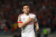 Nico Gaitan, Benfica