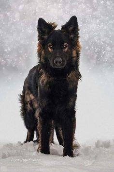 yo jugando en la nieve