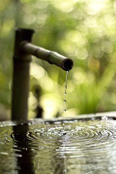 Water in Zen garden Zen Meditation, Buddha Zen, Photo Images, Water Garden, Geisha, Water Features, Relax, Peace, In This Moment