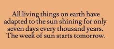 The week of sun.