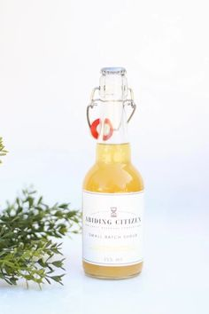 Pineapple Ginger shrub – Pineridge Hollow Aromatic Bitters, Shrub, Lemon Lime, Simple Syrup, Hot Sauce Bottles, Grapefruit, Pineapple, Spices, Strawberry