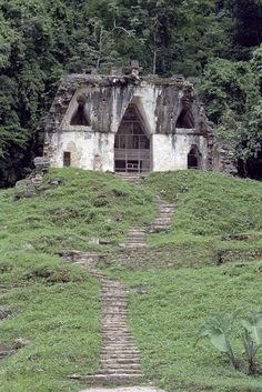 The archaeological site of Palenque is among the most important and impressive ancient Mayan sites