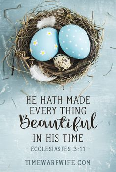 He hath made every thing beautiful in His time. - Ecclesiastes 3:11