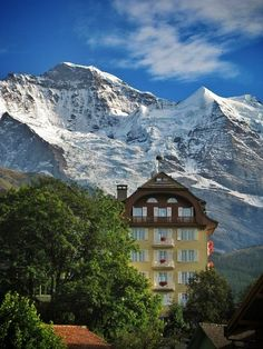 Wengen, Switzerland, Lauterbrunnen, Switzerland - Delightful and...
