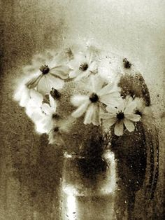 simple bouquet, Josef Sudek