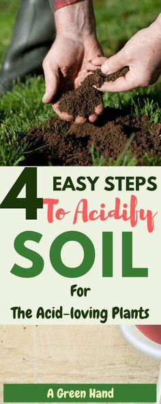 Gardening Compost How To Acidify Soil in 4 Easy Steps. Soil acidification is necessary when dealing with particular types of plants as it creates the right growth environment and ensures that there is no deficiency of important compounds like iron. Backyard Vegetable Gardens, Fruit Garden, Garden Soil, Edible Garden, Garden Plants, Organic Gardening, Gardening Tips, Organic Soil, Organic Fruit