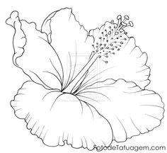 hibisco desenho - Pesquisa Google