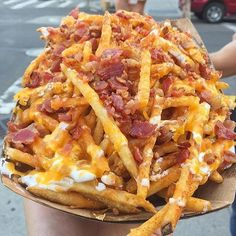 Bacon Pastrami Cheese Fries