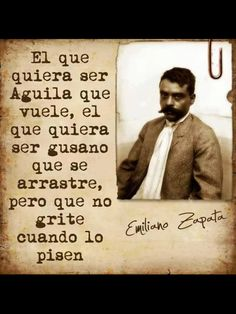 Those wanting to be an eagle should fly. Those wanting to be a worm should crawl but shouldn't cry out when they are stomped. - wise words from courageous Mexican revolutionary Emiliano Zapata Words Quotes, Wise Words, Me Quotes, Funny Quotes, Sayings, Quotable Quotes, Famous Quotes, Daily Quotes, Mexican Quotes