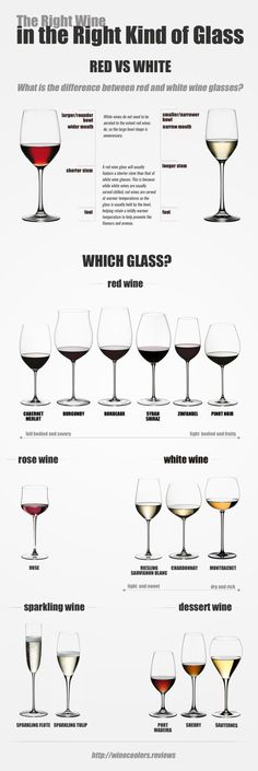The Right Wine in the Right Kind Glass #infographic #infografía