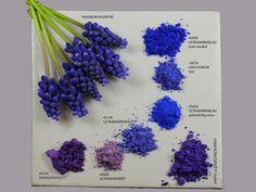 Han purple