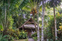 Vom Zirpen des Dschungels und dem Geschrei der Brüllaffen geweckt zu werden, gehört in Costa Rica zum Alltag. Zumindest wenn man in einer Hütte mitten im