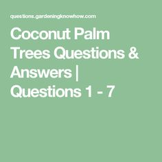Coconut Palm Trees Questions & Answers | Questions 1 - 7