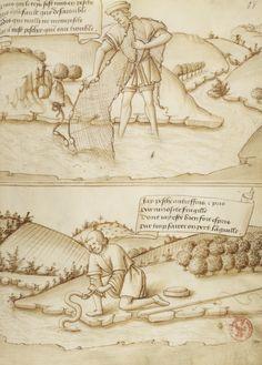http://gallica.bnf.fr/ark:/12148/btv1b8426260f/f137.item