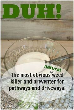 Weeds - they are our gardens' worst enemies! How many different ways have you tried to get rid of them? Pulling, using round-up or other store bought solutions. Now you must be aware that all this store bought weed killers are full with toxic chemicals and harmful not only for your plants bit for the environment too. This is why making a natural, homemade weedkiller is the perfect and smart thing to do. You will be surprised to see how useful, practical, safe and budget friendly can homemade…
