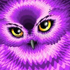Purple colors owl