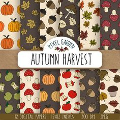 Instant download digital paper pack with hand drawn fall illustrations - pumpkins, fall leaves, maple leaves, mushrooms, apples, acorns in warm