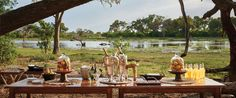 Answer the call of the wild with an unforgettable African adventure. Belmond safaris sizzle with savannah magic. Elephant Camp, Call Of The Wild, Champagne, Al Fresco Dining, Lodges, Safari, Swimming Pools, Table Settings, Tours