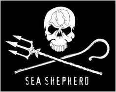 "The Sea Shepherd Logo Means: It stands for the good pirates (SSCS) who pursue the bad pirates (driftnetters, whalers, sealers, poachers, etc). -A shepherd's staff, which represents the way SSCS guards and protects our oceans. -Neptune's trident, which signifies our interventionist approach. -The skull represents the death that humans inflict on the creatures of the sea. -The dolphin and the whale ""yin yang"" symbol to represent the natural balance of the oceans when free from human…"