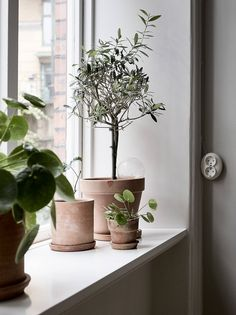 25 Simple and Cute Rustic Wooden Box Centerpiece Ideas to Liven Up Your Decor - The Trending House Nordic Interior, Home Interior, Decor Interior Design, Home Decor Kitchen, Home Decor Bedroom, Home Decor Accessories, Decorative Accessories, Design Scandinavian, Scandinavian Living