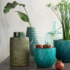 La Redoute online store, FREE Click & Collect for orders over and free returns†. Large Plant Pots, Ceramic Plant Pots, Large Plants, Ceramic Vase, Bangor, Style Artisanal, Autumn Interior, Home Furnishing Accessories, Decoration Plante