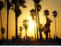 Google Image Result for http://www.californiaimage.com/gallery_stuff/images/Venice-Beach-Skaters.jpg