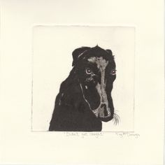 'Didn't get caught' Drypoint Etching by Kay McDonagh.  Original prints available.