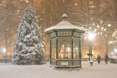 Snow coats the pavilion and trees of Philadelphia's Rittenhouse Square park.  Official total accumulation of snow was 23.2 inches--more than the city usually gets in an entire winter.  Of course, it's not officially winter yet!