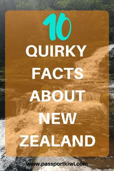 Have you ever wanted to know some quirky facts about New Zealand? Well lucky for you I have 10 quirky facts about New Zealand. Check it out!   New Zealand Travel   Facts about New Zealand   Quirky Facts  