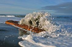 Sea Foam Charlotte City, Haida Gwaii, Enter The Dragon, Small Ponds, Archipelago, Sea Foam, Archie, Sea Creatures, Oceans