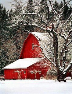 Barn i love red barns! the red pops out of the white n brown! Farm Barn, Old Farm, Barn Pictures, Snowy Pictures, Country Barns, Country Life, Country Charm, Country Roads, Red Barns