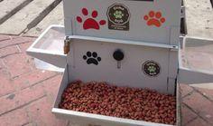 Em Cartagena, na Colômbia, foi instalado esse mês o primeiro comedouro público para cães e gatos em situação de rua da cidade. Mais