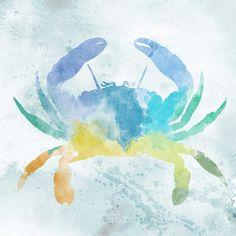 Watercolor Crab Canvas Print | Joss & Main