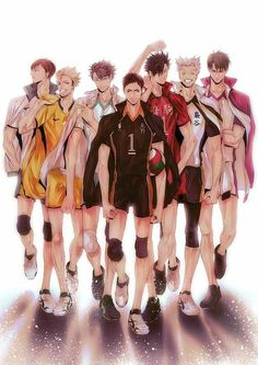 Haikyuu Captain's (Dateko captain whose name I don't know..), Terushima, Oikawa, Daichi, Kuroo, Bokuto, and Ushijima