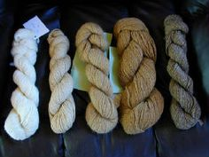 Yarns are available in a wide variety of natural colors from our very own alpacas.  All are exquisitely soft! Sport-weight and fingering weights are available.  Hanks are 3.5 oz , approximately 200 yards and are $20 each.  Buy 10 hanks get one free!