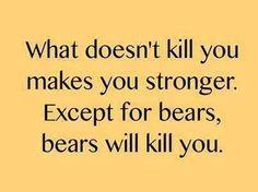 Bears kill!