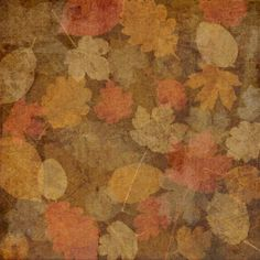 Fall 2 Paper Photo:  This Photo was uploaded by despainlove. Find other Fall 2 Paper pictures and photos or upload your own with Photobucket free image a...