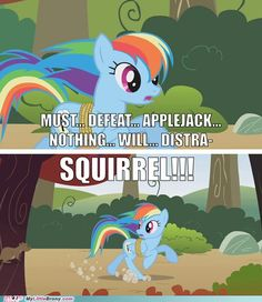 """I have ADHD.  and by """"I"""" I mean Rainbow Dash. We're one and the same."""